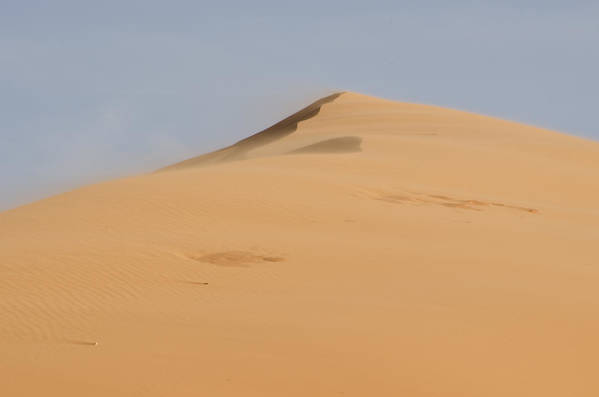 Coral Pink Sand Dunes Poster featuring the photograph Sand Dune by Heather Applegate