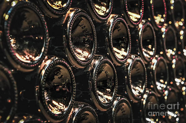 Bottle Poster featuring the photograph Wine Bottles by Elena Elisseeva