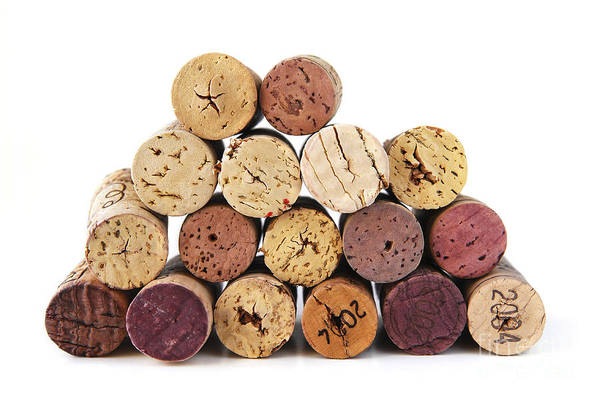 Wine Poster featuring the photograph Wine Corks by Elena Elisseeva