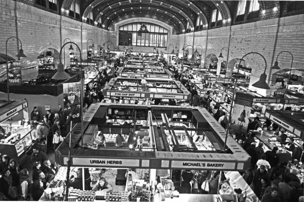 Market Poster featuring the photograph 100 Years by Halle Kirsch