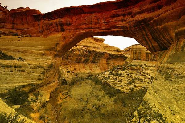Utah Poster featuring the photograph Natural Bridge by Jeff Swan