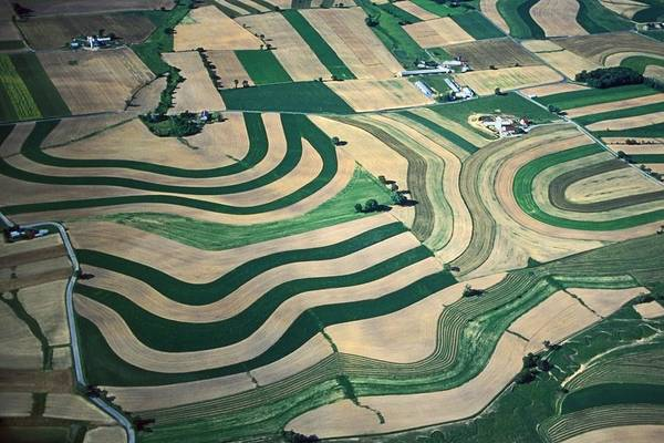 Farmland Designs Poster featuring the photograph Aerial Tapestry by Blair Seitz