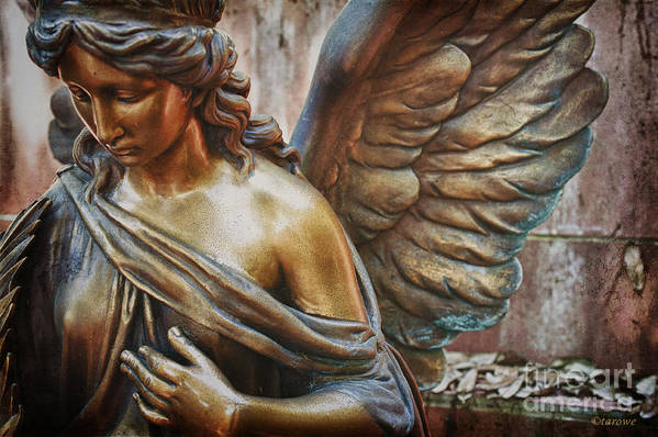 Angelic Contemplation Poster featuring the photograph Angelic Contemplation by Terry Rowe