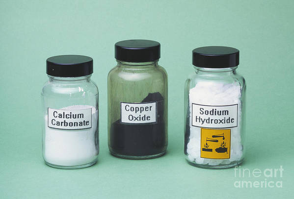 Calcium Carbonate Poster featuring the photograph Bases by Martyn F. Chillmaid