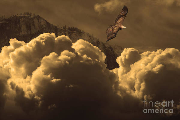 Wingsdomain Poster featuring the photograph Before Memory . I Have Soared With The Hawk by Wingsdomain Art and Photography