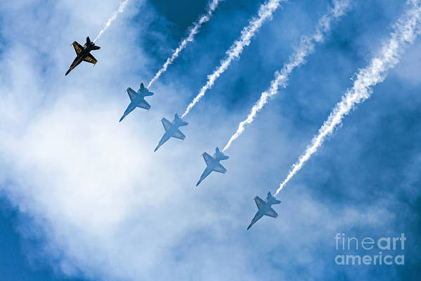Blue Angels Poster featuring the photograph Blue Angels by Kate Brown
