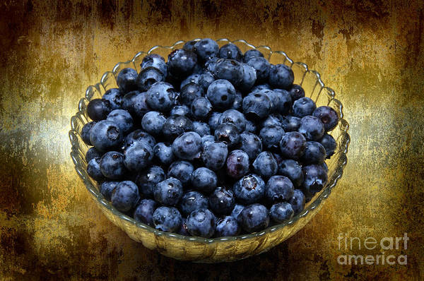 Blueberries Poster featuring the photograph Blueberry Elegance by Andee Design