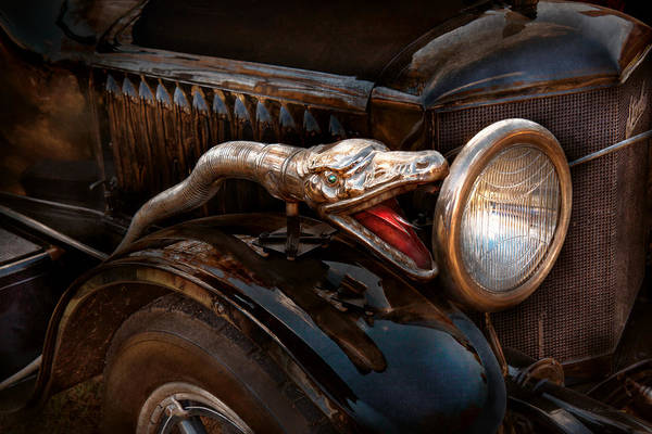 Stanley Steamer Poster featuring the photograph Car - Steamer - Snake Charmer by Mike Savad