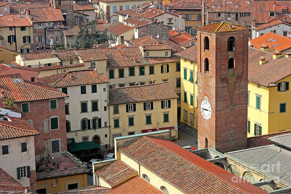 Sight Poster featuring the photograph City View Of Lucca With The Clock Tower by Kiril Stanchev