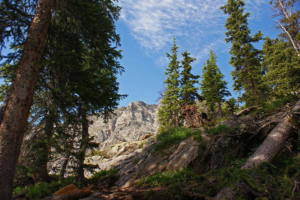 Landscape Poster featuring the photograph Colorado Mountain Hike by Michael J Bauer