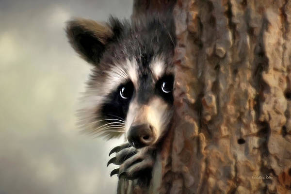 Raccoon Poster featuring the mixed media Conspicuous Bandit by Christina Rollo