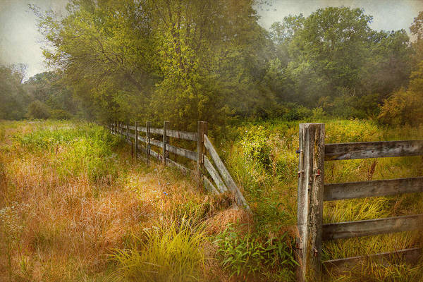 Savad Poster featuring the photograph Country - Landscape - Lazy Meadows by Mike Savad