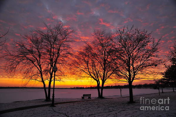 Winter Poster featuring the photograph December Sunset by Terri Gostola