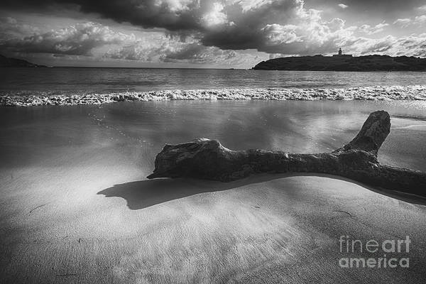 B&w Poster featuring the photograph Driftwood On A Beach by George Oze