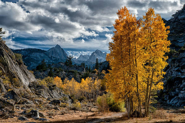 Mountains Poster featuring the photograph Fall In The Eastern Sierra by Cat Connor