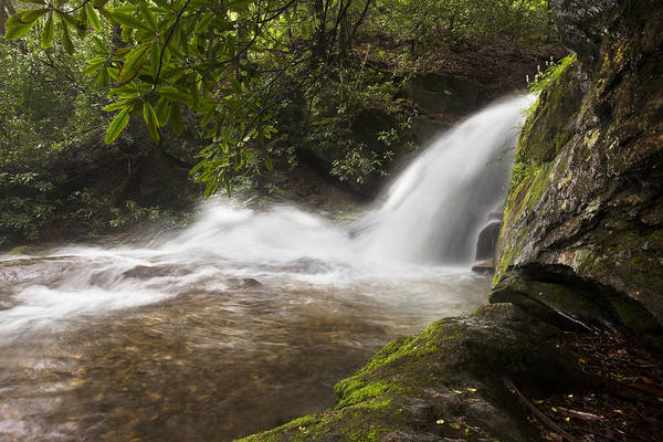 Appalachia Poster featuring the photograph Hidden Waterfall by Debra and Dave Vanderlaan