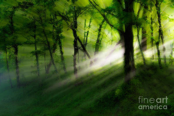 Blue Ridge Parkway Poster featuring the photograph Hope Lights Eternal - A Tranquil Moments Landscape by Dan Carmichael