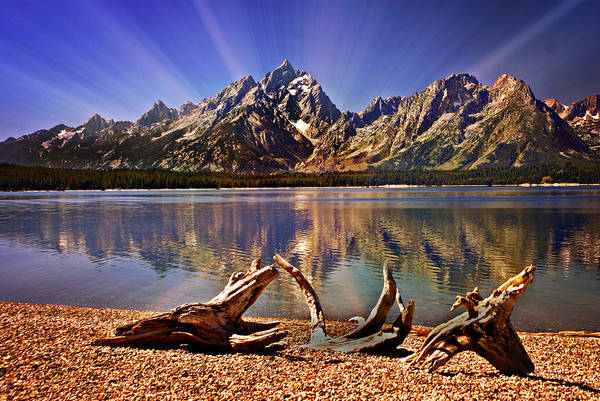 Grand Teton Poster featuring the photograph Jackson Lake Mt. Moran by Marty Koch