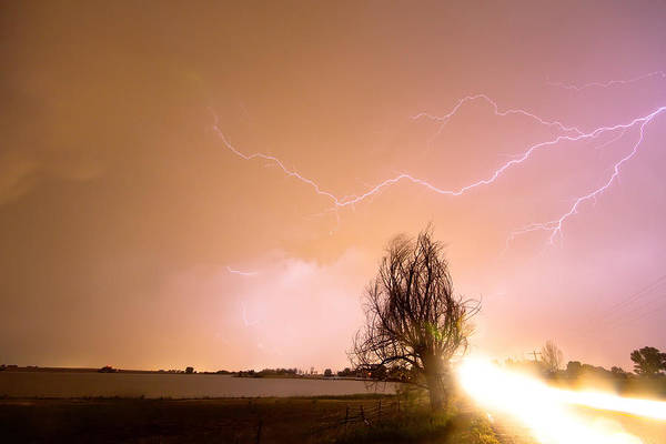 Lightning Poster featuring the photograph North Boulder County Colorado Lightning Strike by James BO Insogna