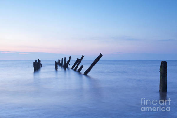 Blue Poster featuring the photograph Old Jetty Posts At Sunrise by Colin and Linda McKie