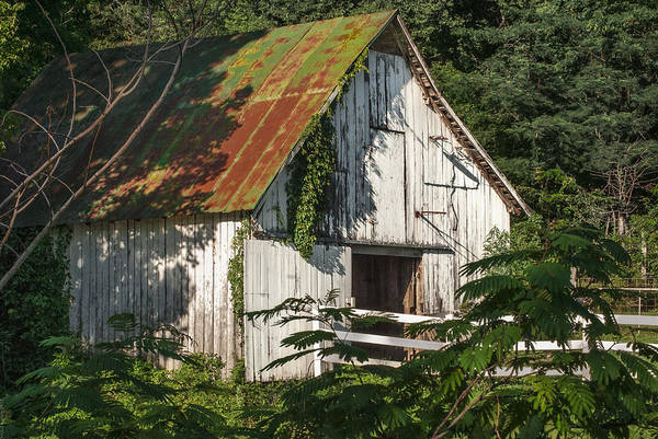 Barn Poster featuring the photograph Old Whitewashed Barn In Tennessee by Debbie Karnes