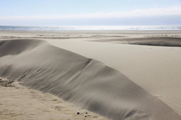 Sand Dunes Poster featuring the photograph Pacific Ocean Sand Dunes by Athena Mckinzie