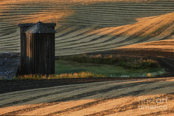 Landscape Poster featuring the photograph Palouse Sunset by Sandra Bronstein
