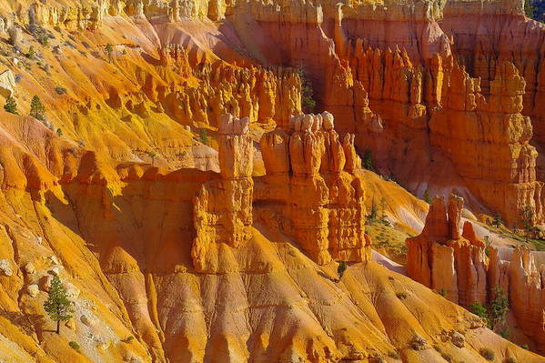 Rocks Poster featuring the photograph Pinnicles At Sunset Point Bryce Canyon National Park by Jeff Swan