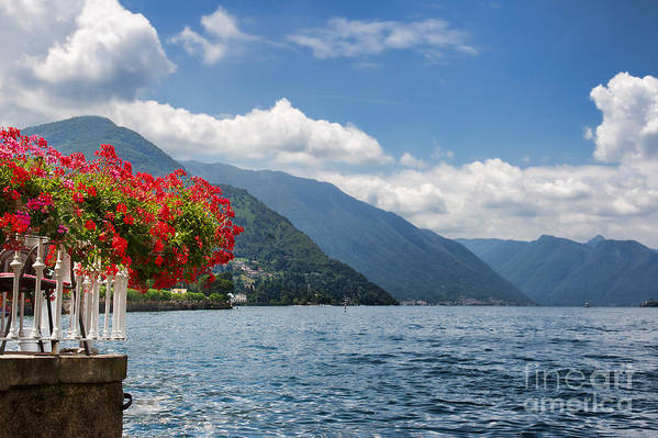 Lake Poster featuring the photograph Red Flowers By Lake Como Italy by Anna-Mari West
