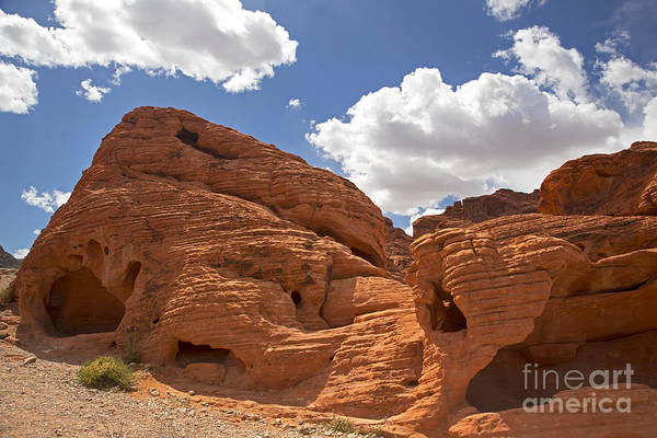 Desert Poster featuring the photograph Rock Formations Valley Of Fire by Jane Rix