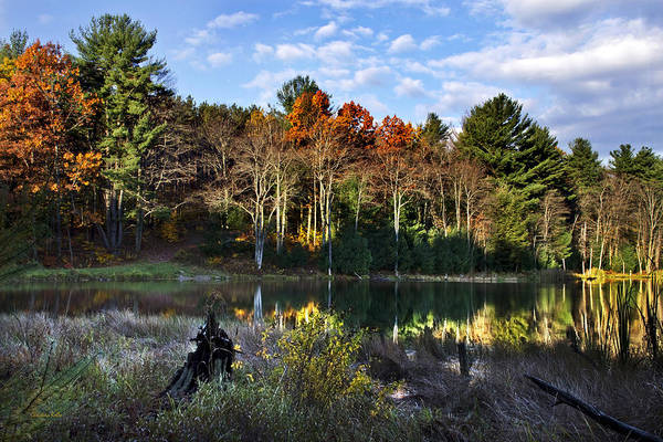 Fall Poster featuring the photograph Scenic Autumn At Oakley's by Christina Rollo