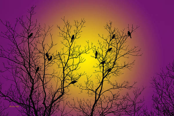 Silhouette Poster featuring the mixed media Silhouette Birds by Christina Rollo