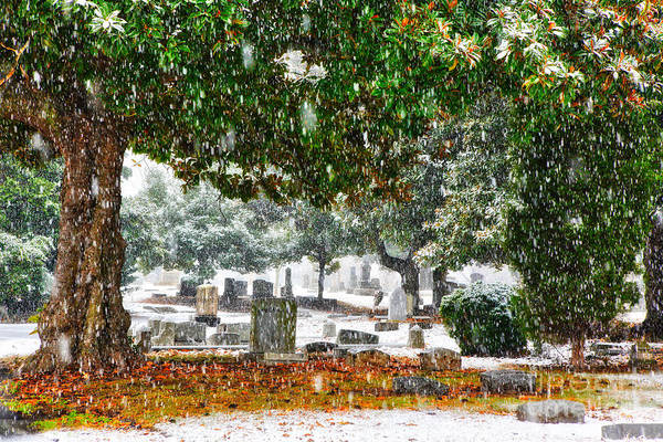 Greensboro Poster featuring the painting Snowy Day At The Cemetery - Greensboro North Carolina by Dan Carmichael