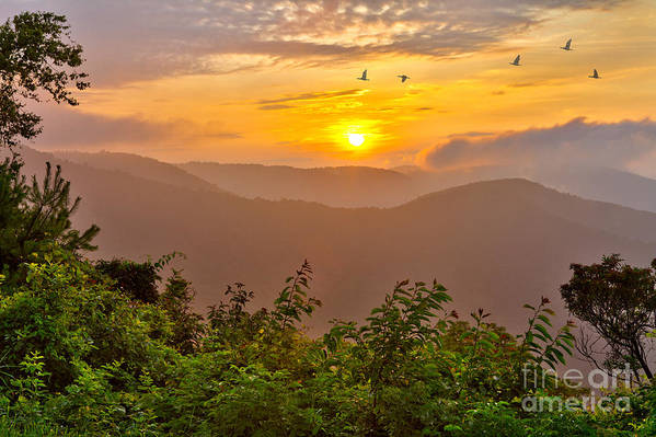 Blue Ridge Parkway Poster featuring the photograph Soaring At Sunrise - Blue Ridge Parkway I by Dan Carmichael
