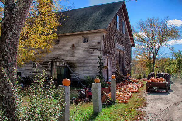Autumn Foliage Poster featuring the photograph The Harvest Is In by Jeff Folger