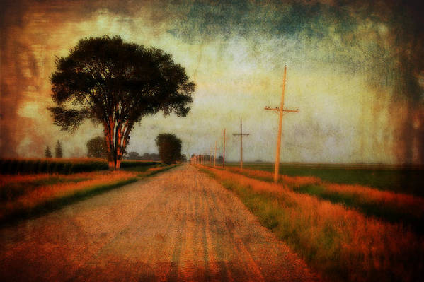 Gravel Road Poster featuring the photograph The Road Home by Julie Hamilton
