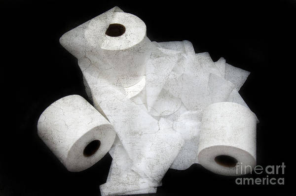 Toilet-paper Poster featuring the photograph The Spare Rolls 3 - Toilet Paper - Bathroom Design - Restroom - Powder Room by Andee Design