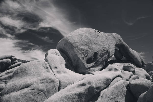Joshua Tree National Park Poster featuring the photograph This Hole In My Heart Is For You by Laurie Search