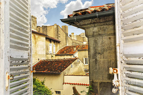Cognac Poster featuring the photograph View In Cognac by Elena Elisseeva