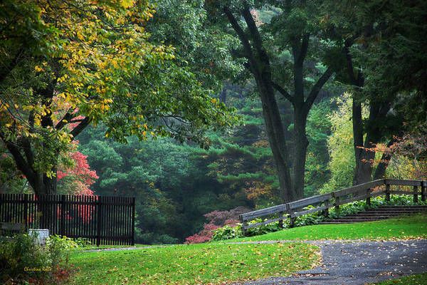 Fall Poster featuring the photograph Walk In The Park by Christina Rollo