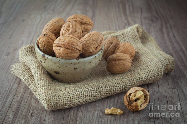 Autumn Poster featuring the photograph Walnuts by Sabino Parente
