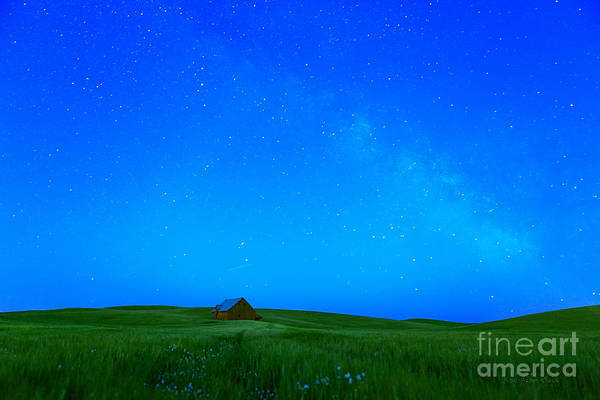Barn Poster featuring the photograph When The Stars Go Blue by Beve Brown-Clark Photography