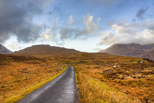Galway Poster featuring the photograph Wild Landscape Of Connemara Ireland by Mark Tisdale