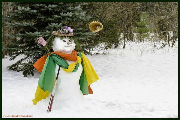 Snowman Poster featuring the photograph Winter Baseball Ball Gown by LeeAnn McLaneGoetz McLaneGoetzStudioLLCcom