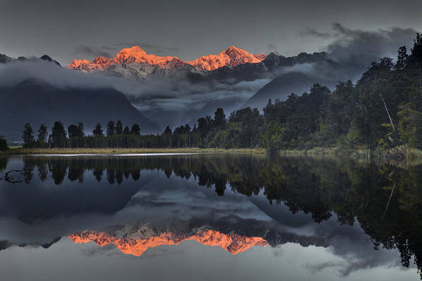 00462452 Poster featuring the photograph Sunset Reflection Of Lake Matheson by Colin Monteath