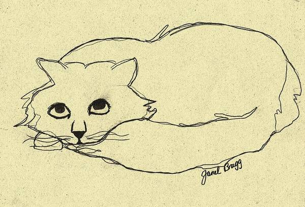Cat Poster featuring the drawing Thomas The Cat by Janel Bragg