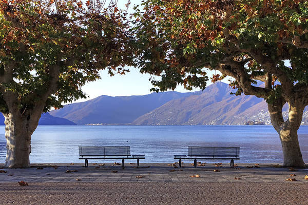 Plane Poster featuring the photograph Ascona - Lake Maggiore by Joana Kruse