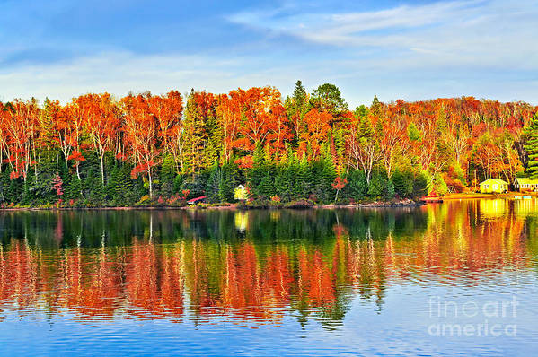 Lake Poster featuring the photograph Fall Forest Reflections by Elena Elisseeva