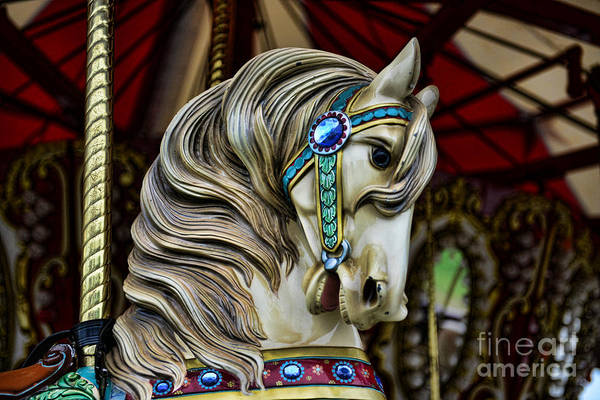 Carousel Poster featuring the photograph Carousel Horse 3 by Paul Ward