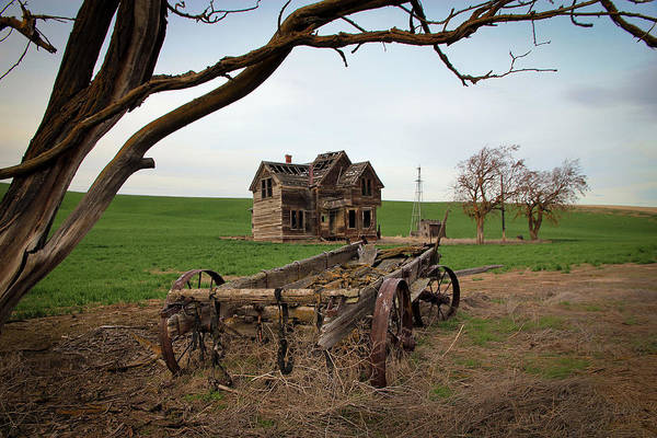 Covered Wagon Poster featuring the photograph Country Home And Wagon by Athena Mckinzie